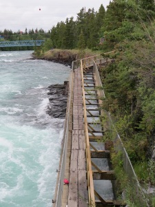Dam wall with fish ladder for salmon