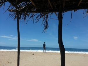 Adrian standing on the beach framed by palm trees