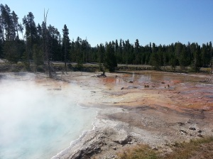 Hot sulphur springs in Yellowstone National Park