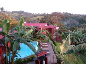 View of Toad Hall Costa Rica including pool and house - and tropical jungle