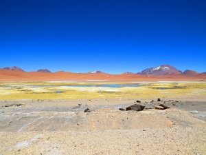 The ever-changing desert landscape