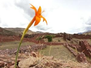 Pre-incan ruins at Pikillacta